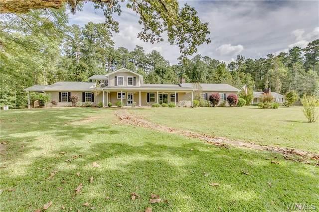 560 Dollar Road, NORTHPORT, AL 35473 (MLS #146560) :: The Gray Group at Keller Williams Realty Tuscaloosa