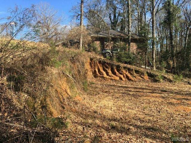 2107 Fountain Way, NORTHPORT, AL 35473 (MLS #146578) :: The K|W Group