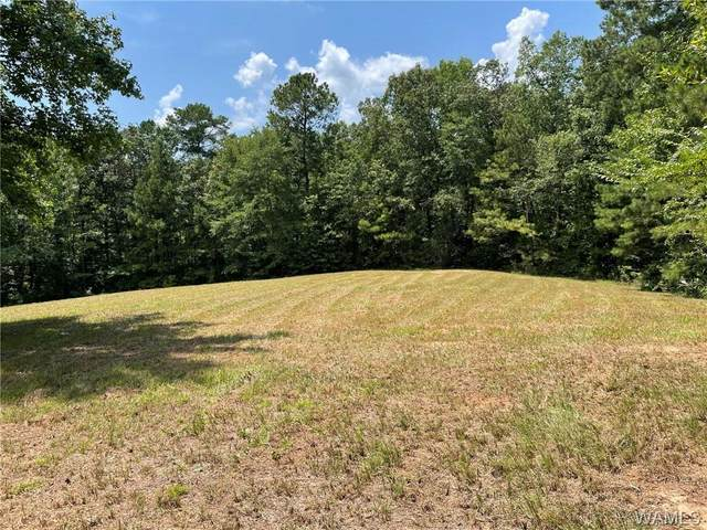15454 South Rosser Road, MOUNDVILLE, AL 35474 (MLS #146654) :: The Alice Maxwell Team