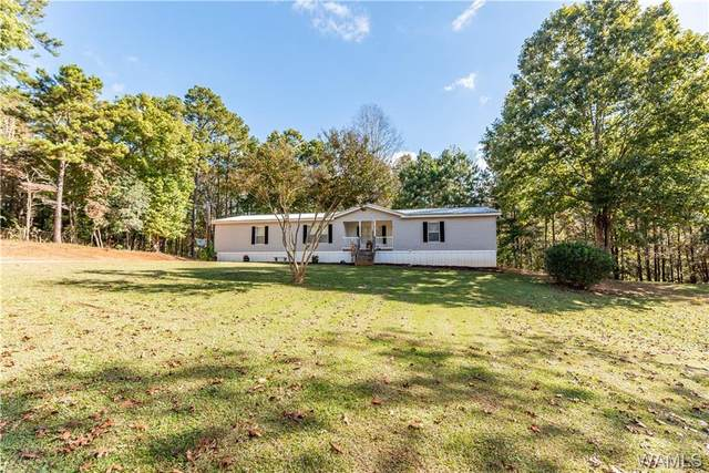18181 North River Lane, NORTHPORT, AL 35475 (MLS #146725) :: The Advantage Realty Group