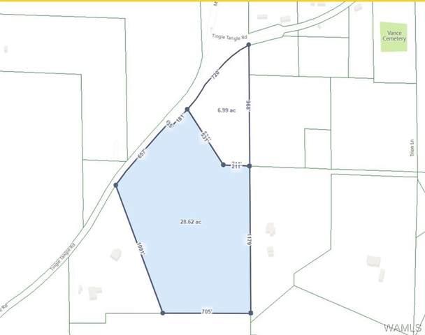 000 Tingle Tangle Road, VANCE, AL 35490 (MLS #146741) :: The K|W Group