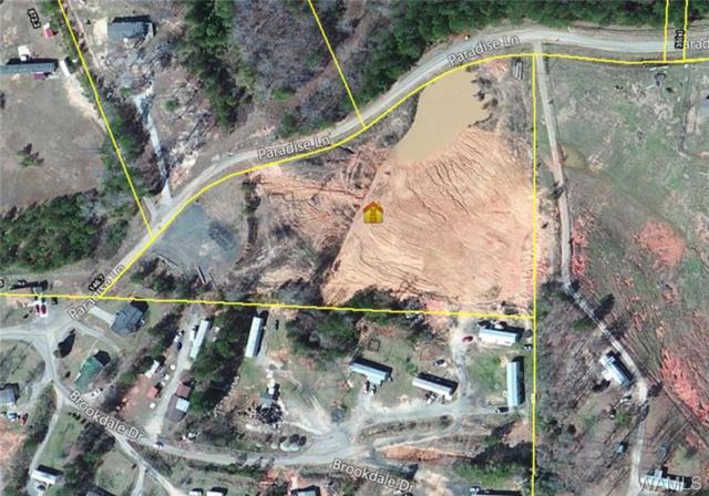 0 Paradise Lane, BROOKWOOD, AL 35444 (MLS #121125) :: Alabama Realty Experts