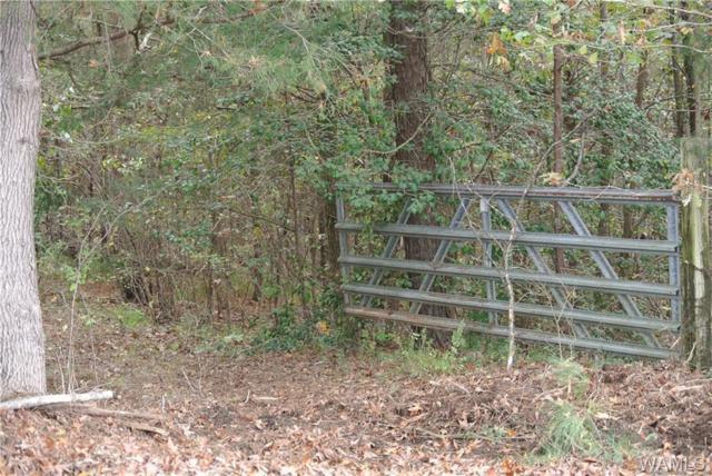 1 Buster Tierce Road #1, NORTHPORT, AL 35473 (MLS #123999) :: The Gray Group at Keller Williams Realty Tuscaloosa