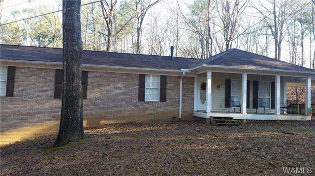 6681 Lon Hyche Road, NORTHPORT, AL 35473 (MLS #125413) :: The Advantage Realty Group