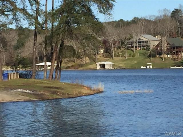 00 Lake Hills Drive, NORTHPORT, AL 35475 (MLS #125879) :: The Advantage Realty Group