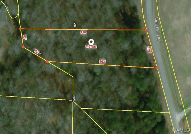 3 Burnt Pines Road, NORTHPORT, AL 35475 (MLS #125989) :: The Advantage Realty Group