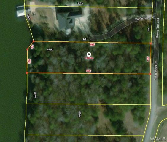 9 Burnt Pines Road, NORTHPORT, AL 35475 (MLS #125997) :: The Advantage Realty Group