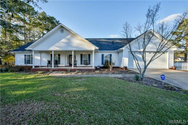 6720 Hibiscus Lane, NORTHPORT, AL 35473 (MLS #126074) :: The Advantage Realty Group