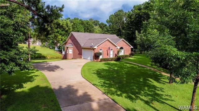 15145 Stonehedge Cliffs Road, NORTHPORT, AL 35475 (MLS #126154) :: The Advantage Realty Group