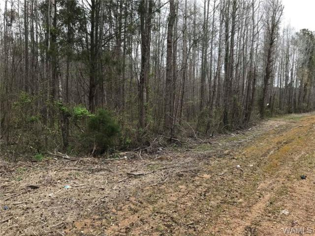 000 Hwy 69 South, AKRON, AL 35441 (MLS #126235) :: The Advantage Realty Group