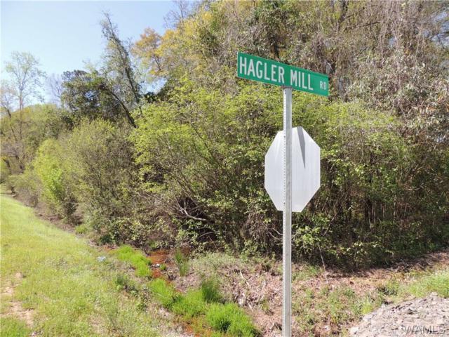 13 Hagler Mill Road #13, NORTHPORT, AL 35475 (MLS #126487) :: The Gray Group at Keller Williams Realty Tuscaloosa