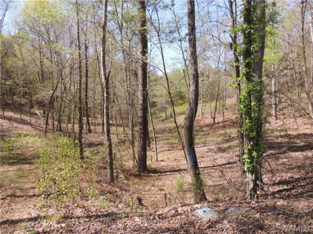 9 Hagler Mill Road #9, NORTHPORT, AL 35475 (MLS #126519) :: The Gray Group at Keller Williams Realty Tuscaloosa