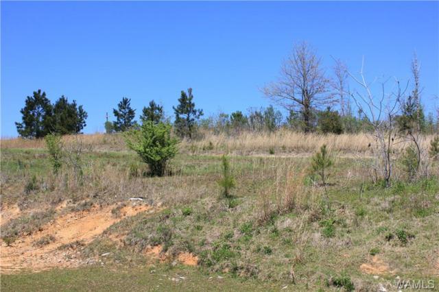 14450 Dixie Land Road, BROOKWOOD, AL 35444 (MLS #126630) :: Alabama Realty Experts