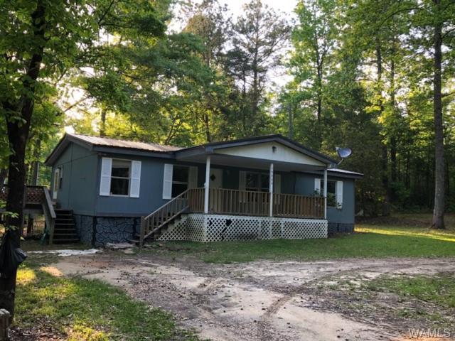 10385 Hidden Springs Trail, VANCE, AL 35490 (MLS #126875) :: Alabama Realty Experts