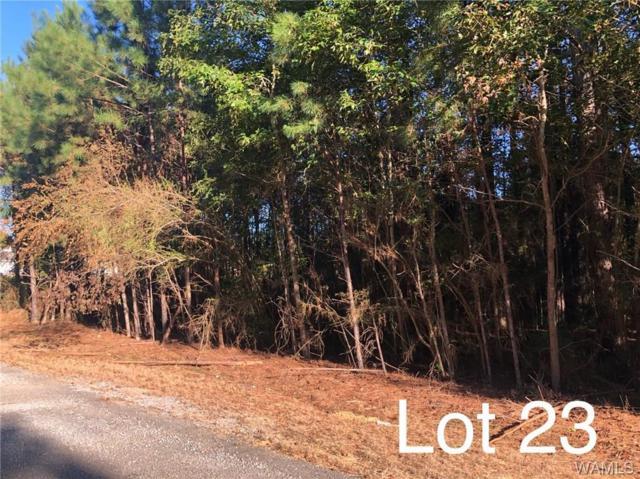 Lot 23, 24 Lake Hills Lane, NORTHPORT, AL 35475 (MLS #127506) :: The Gray Group at Keller Williams Realty Tuscaloosa
