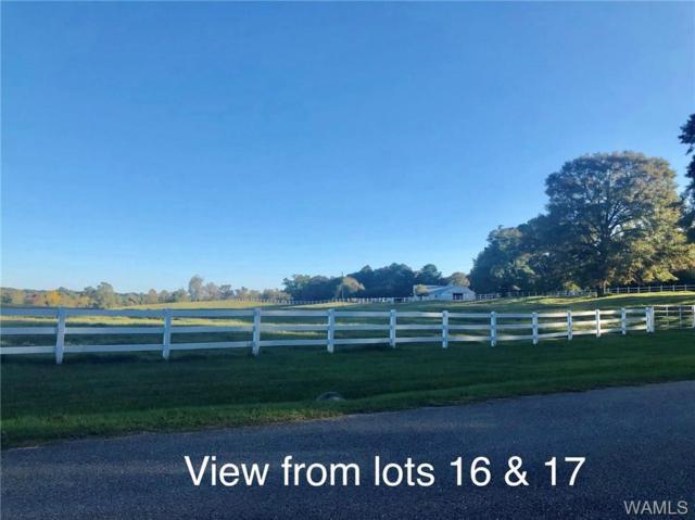 Lot 16 & 17 Lake Hills Drive, NORTHPORT, AL 35475 (MLS #127513) :: The Gray Group at Keller Williams Realty Tuscaloosa