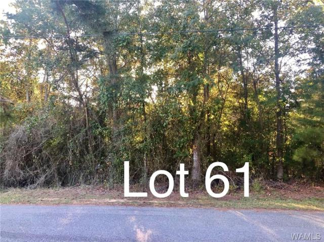 Lot 61 Lake Hills Drive, NORTHPORT, AL 35475 (MLS #127515) :: The Gray Group at Keller Williams Realty Tuscaloosa