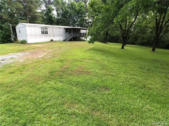 10261 Fowler Drive, NORTHPORT, AL 35473 (MLS #127623) :: The Advantage Realty Group