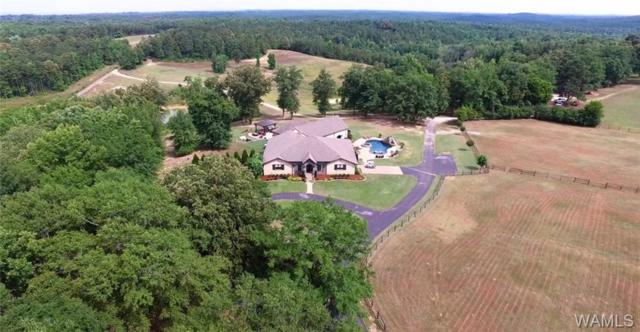 16552 Boothtown Road, BUHL, AL 35446 (MLS #127991) :: The Gray Group at Keller Williams Realty Tuscaloosa