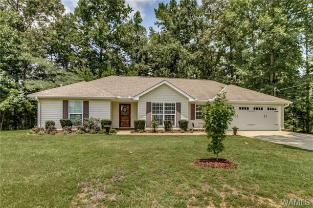 7920 Stormy Lane, NORTHPORT, AL 35473 (MLS #128143) :: The Gray Group at Keller Williams Realty Tuscaloosa