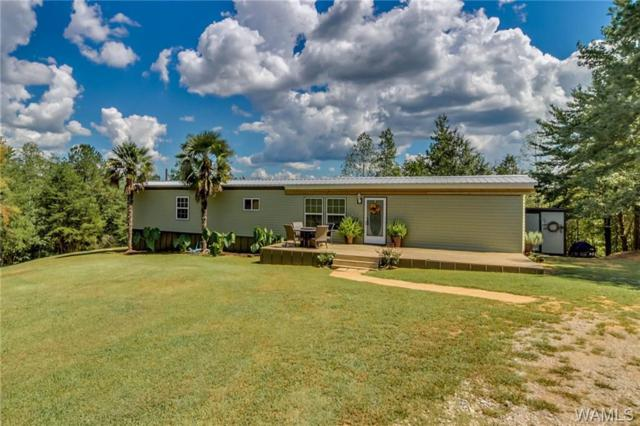 11350 Joe Namath Road, NORTHPORT, AL 35475 (MLS #129837) :: The Advantage Realty Group