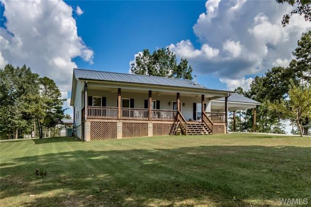 13152 Woodview Ridge, NORTHPORT, AL 35475 (MLS #129869) :: The Advantage Realty Group