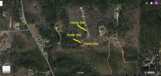 Lot 5 Woodview Ridge, NORTHPORT, AL 35475 (MLS #129908) :: The Advantage Realty Group