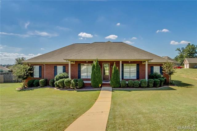 13931 Willow View Lane, NORTHPORT, AL 35475 (MLS #130152) :: The Gray Group at Keller Williams Realty Tuscaloosa