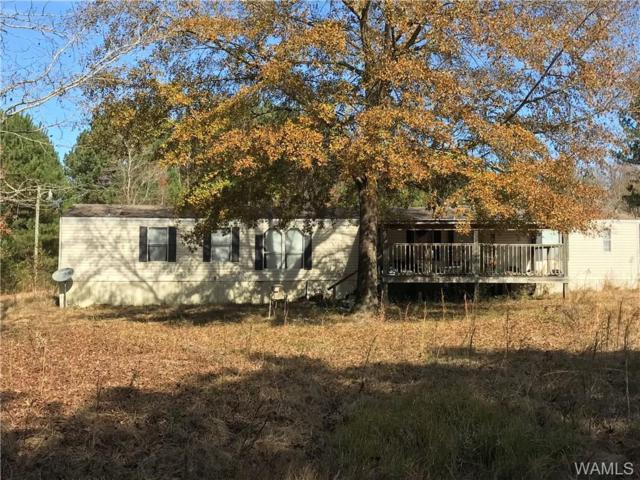 55 Rue Road, GORDO, AL 35466 (MLS #130228) :: The Advantage Realty Group