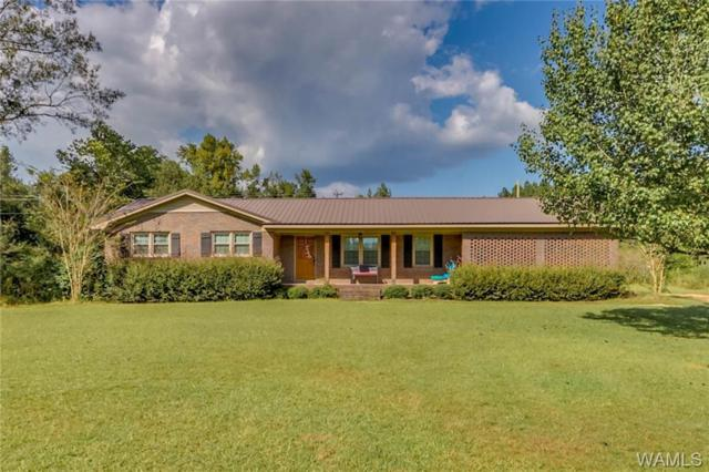 261 13TH Avenue NW, GORDO, AL 35466 (MLS #130251) :: The Advantage Realty Group