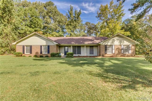 12133 Graceland Road, NORTHPORT, AL 35475 (MLS #130335) :: The Gray Group at Keller Williams Realty Tuscaloosa