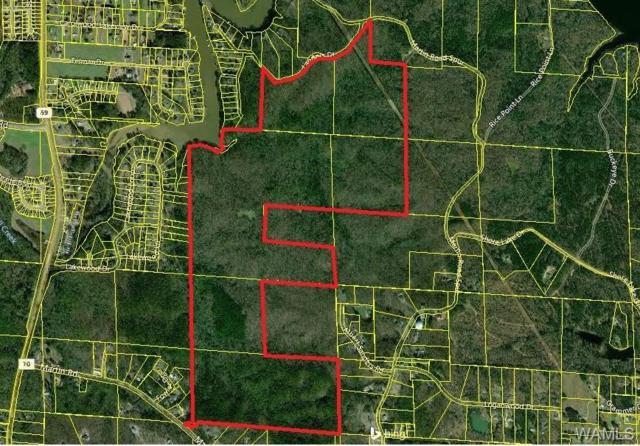 000 Martin Spur Road, TUSCALOOSA, AL 35473 (MLS #130886) :: The Gray Group at Keller Williams Realty Tuscaloosa