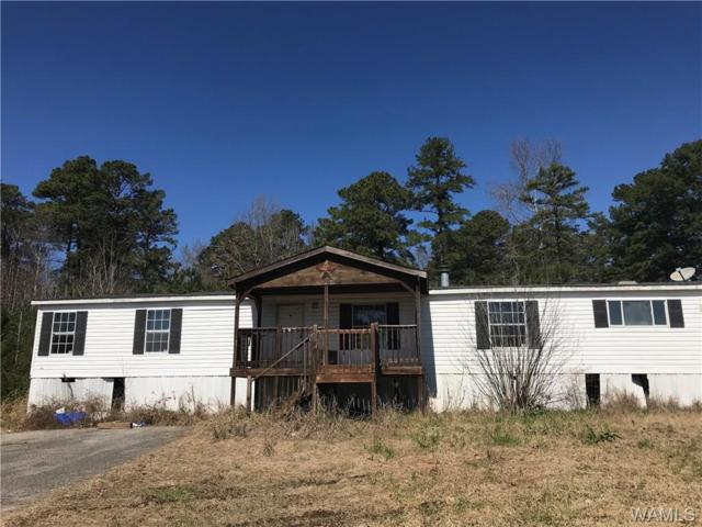 11985 Day Lake Drive, BROOKWOOD, AL 35444 (MLS #131056) :: Hamner Real Estate