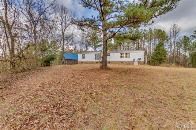 18060 Parks Road, GORDO, AL 35466 (MLS #131164) :: The Advantage Realty Group