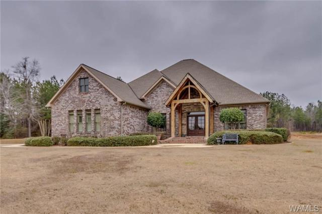15218 Round Oak Drive, DUNCANVILLE, AL 35476 (MLS #131247) :: The Gray Group at Keller Williams Realty Tuscaloosa