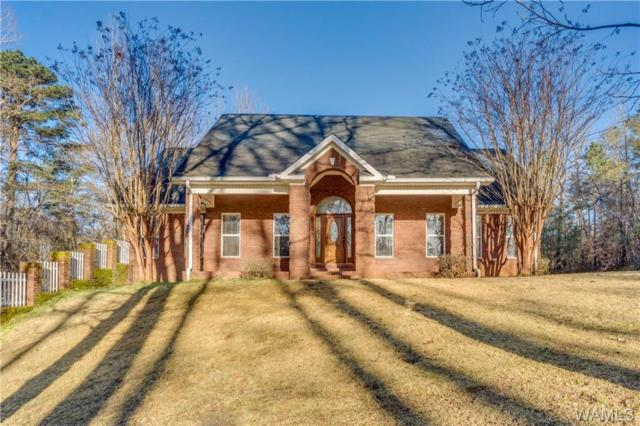 12152 Cougar Drive, BROOKWOOD, AL 35444 (MLS #131740) :: The Advantage Realty Group