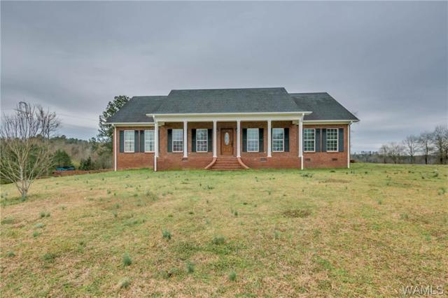 1677 Co Rd 56, BERRY, AL 35546 (MLS #132120) :: The Advantage Realty Group