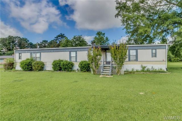 260 Armory Avenue, BERRY, AL 35546 (MLS #132464) :: The Advantage Realty Group