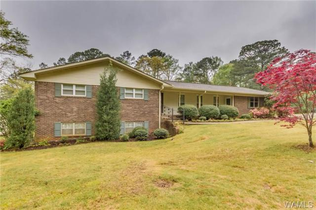 4110 67th Avenue, NORTHPORT, AL 35473 (MLS #132546) :: The Gray Group at Keller Williams Realty Tuscaloosa