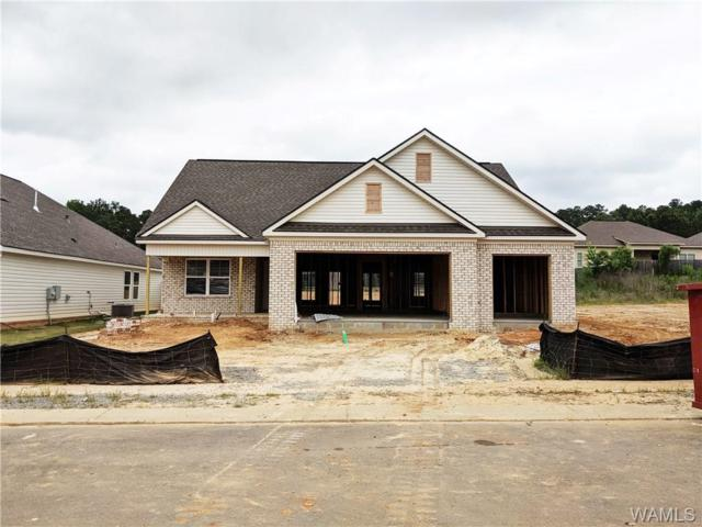 4138 Richmond Street, NORTHPORT, AL 35473 (MLS #132558) :: Wes York Team