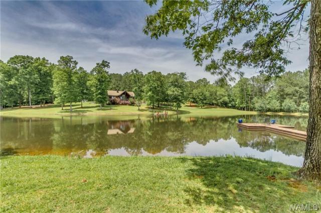 13437 Crimson Valley Drive, COTTONDALE, AL 35453 (MLS #132796) :: Wes York Team
