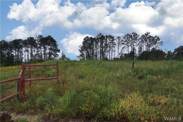 0 Don Anderson Parkway, BROOKWOOD, AL 35444 (MLS #133181) :: The Advantage Realty Group