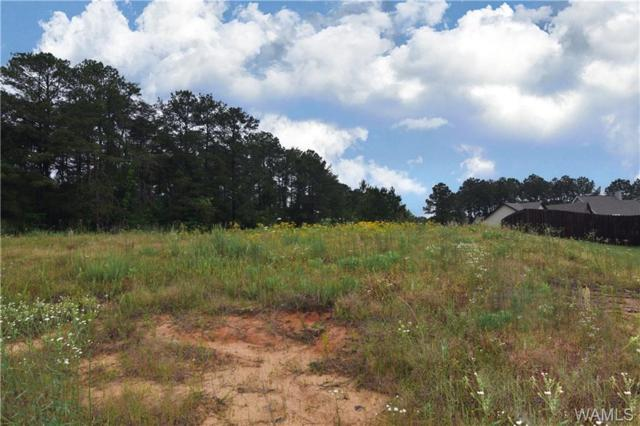 15510 Don Anderson Parkway, BROOKWOOD, AL 35444 (MLS #133183) :: The Advantage Realty Group