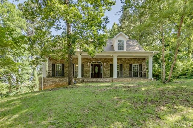 3708 Biscayne Hills Drive, NORTHPORT, AL 35473 (MLS #133352) :: The Alice Maxwell Team