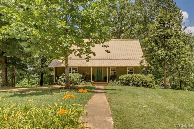 11554 Deer Ridge Drive, COTTONDALE, AL 35453 (MLS #133756) :: Hamner Real Estate