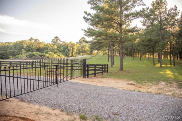 10973 House Bend Road, NORTHPORT, AL 35475 (MLS #134077) :: Wes York Team