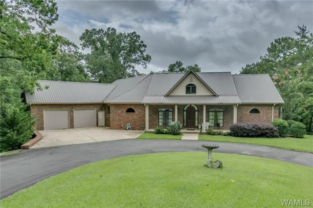 10955 Lawrenceville Road, NORTHPORT, AL 35475 (MLS #134137) :: The Alice Maxwell Team