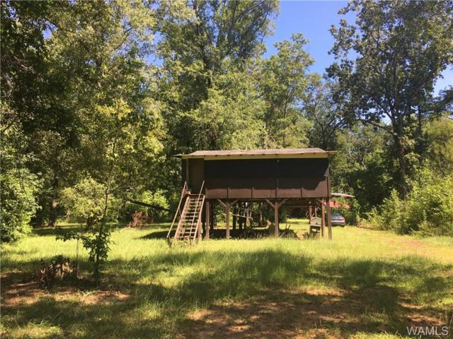 1957 Brush Creek Drive, SAWYERVILLE, AL 35776 (MLS #134296) :: The K|W Group