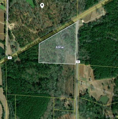 00 Highway 18 E, BERRY, AL 35546 (MLS #134811) :: The Advantage Realty Group