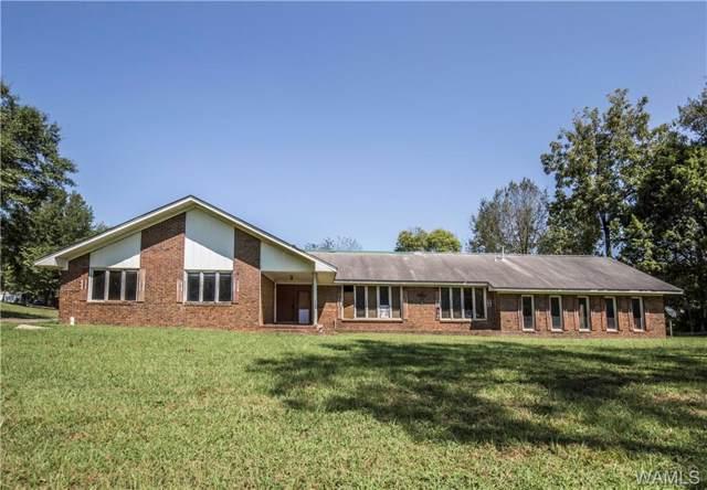 15682 Pine Lake Drive, COTTONDALE, AL 35453 (MLS #134961) :: Hamner Real Estate